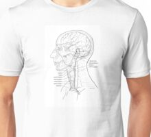 Venous Drainage of the Head and Neck Unisex T-Shirt