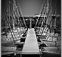 Sailboats In Tayport Harbour,Scotland by Aj Finan