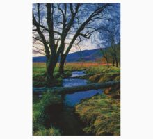 EVENING IN CADES COVE T-Shirt