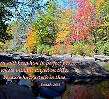 Perfect Peace by Deborah Berry