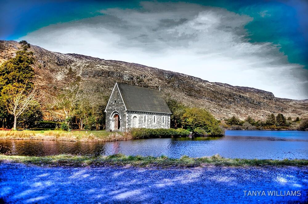 Gougane Barra, Cork, Ireland by TANYA WILLIAMS