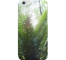 Backlit Ferns, Gifford Pinchot National Forest iPhone Case/Skin