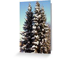 Sun.....Snow...Winter Greeting Card