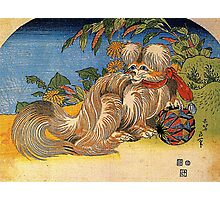 'Tschin the Pet Dog' by Katsushika Hokusai (Reproduction) Photographic Print