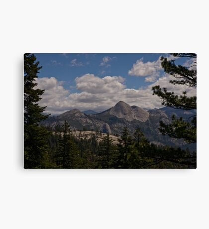 Along the Road to Glacier Point Canvas Print