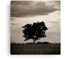 OnePhotoPerDay Series: 141 by L. Canvas Print