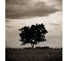 OnePhotoPerDay Series: 141 by L. Photographic Print