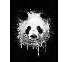 Cool Abstract Graffiti Watercolor Panda Portrait in Black & White  Photographic Print