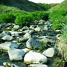 Monreith Bay Stream by sarnia2
