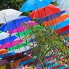 Any Umbrellas  ?  ...(altogether now) by Mike Honour