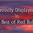 Best of Red Bubble member banner by rocamiadesign