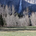 Yosemite Falls by jdbussone