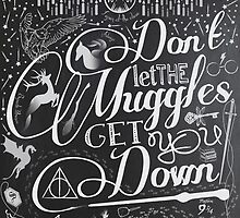 Don't let the Muggles get you down by KatySouders