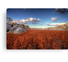 Red Wash Canvas Print