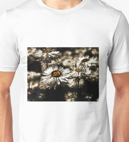 Paper Daises Unisex T-Shirt