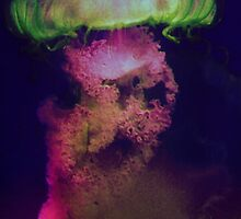 Jellyfish5 by Bronia Swayer
