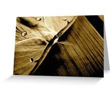 tree moth Greeting Card