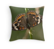 Lepidoptera Throw Pillow