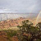 End of the Rainbows by Kim Barton