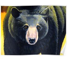 BLACK BEAR IN AUTUMN detail Poster
