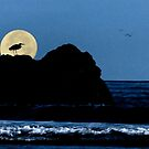 Moody Blues Heron Silhouette by Diane Schuster