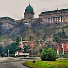 Buda Castle by zumi