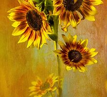 Glorious Sunflowers by Diane Schuster