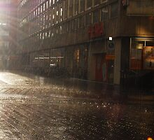 sun and rainshine by risha