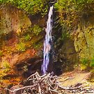 A Small Waterfall At Depot Bay On The Oregon Coast by Diane Schuster