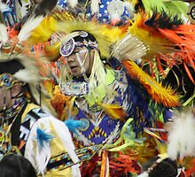 Feeling the Heartbeat of the Great Spirit by Alyce Taylor