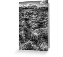 Straw Flow Greeting Card