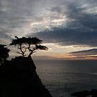 Pebble Beach Lone Cypress by jdbussone