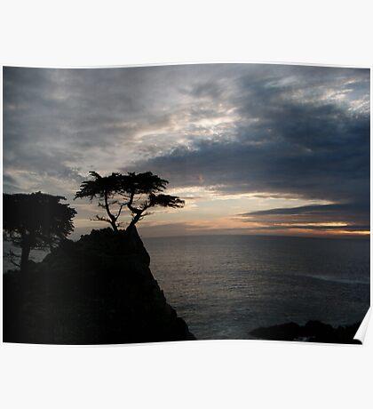 Pebble Beach Lone Cypress Poster