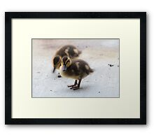 I'm so cute! Framed Print