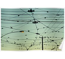 Wires & Sky Poster