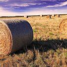 Hay Bales by Kym Howard