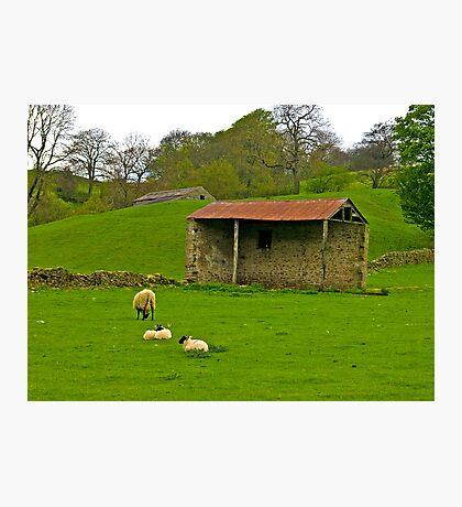 Open Barn Photographic Print