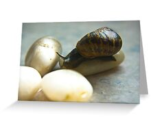 Snail #4 Greeting Card