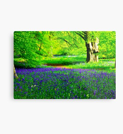 Bluebell Wood - Thorpe Perrow #2 Metal Print