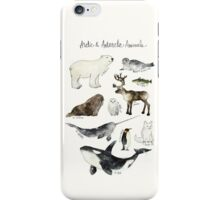 Arctic & Antarctic Animals iPhone Case/Skin