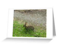 In and Out of Shadows with a Hatful of Tricks Greeting Card