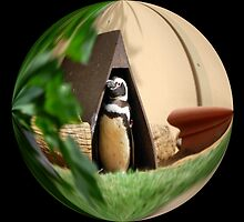 My Humble Abode: Penguin World by Cherubtree