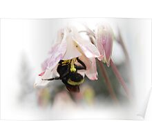 Busy Busy Little Bumble Bee Poster