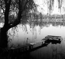 Quiet morning by Igor Philipenko