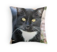 Black and White Cat Laying Down Throw Pillow