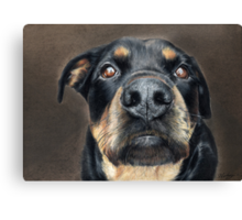 The Nose! Canvas Print