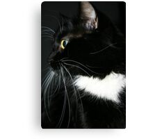 Wide-eyed 'Innocence' Canvas Print
