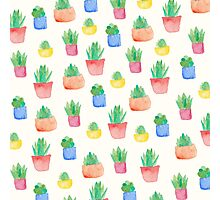Watercolour Potted Succulents Pattern Photographic Print