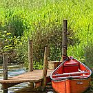 Can u Canoe??? by TeresaB