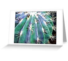 Cactus #6 - Postcard Greeting Card